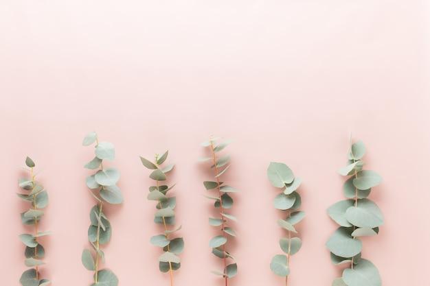 Blumen und eukaliptus zusammensetzung.