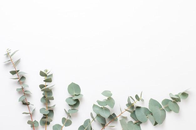 Blumen und eukaliptus zusammensetzung