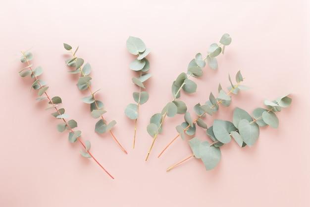 Blumen und eukalyptuszusammensetzung muster aus verschiedenen bunten blumen