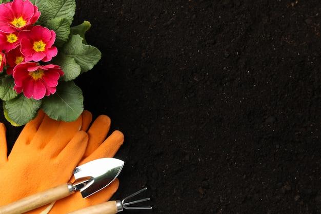 Blumen und gartengeräte auf bodenhintergrund, platz für text