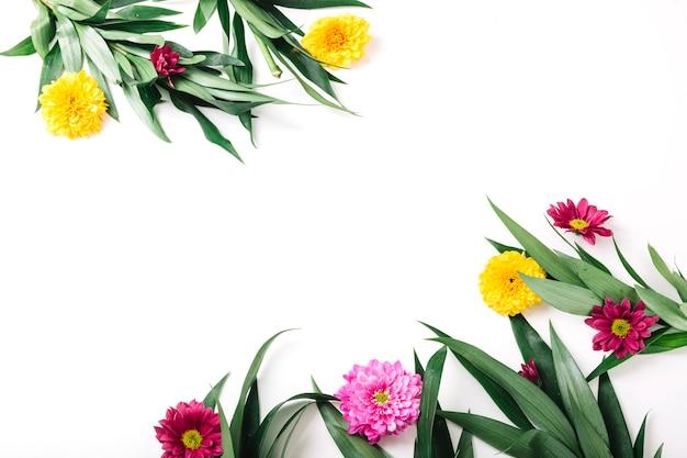 Blumen und zweig auf weißem hintergrund