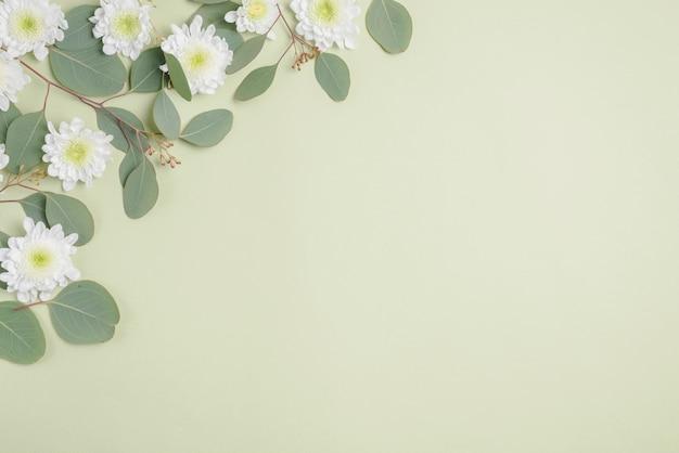 Blumen und zweige auf hellem hintergrund