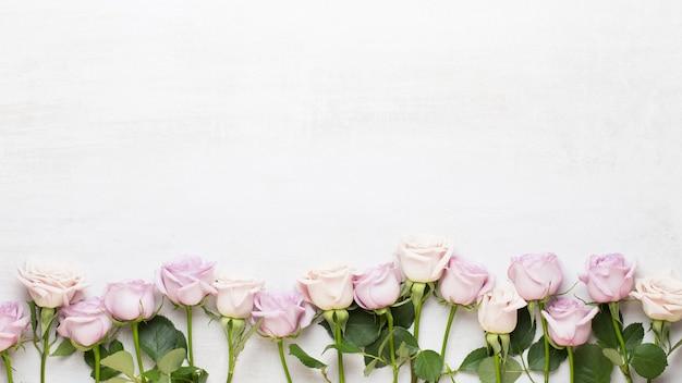 Blumen valentinstag grußkarte. rahmen aus rosa rose auf grauem hintergrund. flache lage, ansicht von oben, kopienraum.
