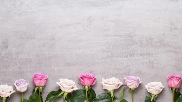 Blumen valentinstag zusammensetzung. rahmen aus rosa rose auf grauem hintergrund. flache lage, ansicht von oben, kopienraum.