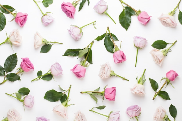 Blumen valentinstag zusammensetzung. rahmen aus rosa rose auf grauem hintergrund. flache lage, draufsicht, kopierraum.
