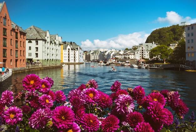 Blumen wachsen auf den straßen der berühmten norwegischen stadt alesund
