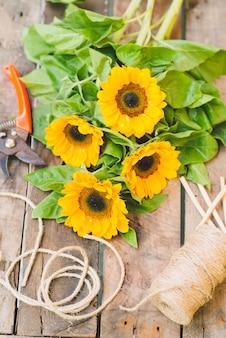 Blumen zum verkauf