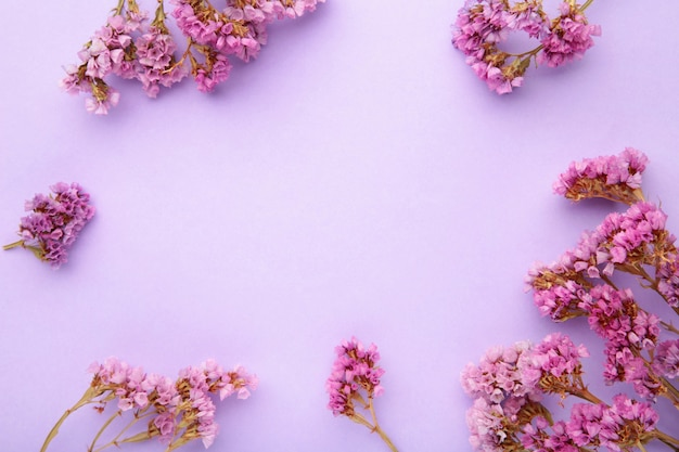Blumen zusammensetzung. gypsophila blüten. flache lage, draufsicht, kopierraum. frühling