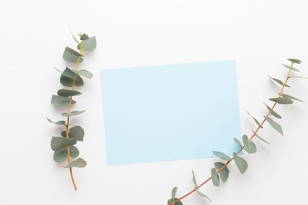Blumen zusammensetzung. papierrohling, blumen, eukalyptuszweige auf pastellhintergrund. flache lage, draufsicht