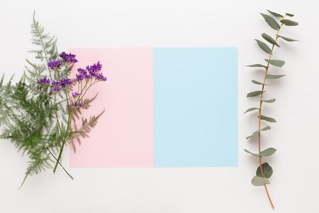 Blumen zusammensetzung. papierrohling, nelkenblüten, eukalyptuszweige auf pastell