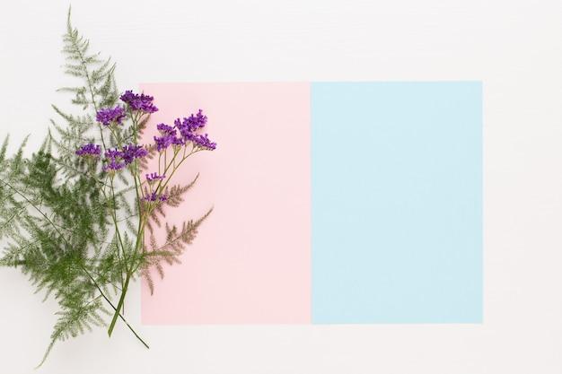 Blumen zusammensetzung. papierrohling, nelkenblüten, eukalyptuszweige. flache lage, draufsicht.