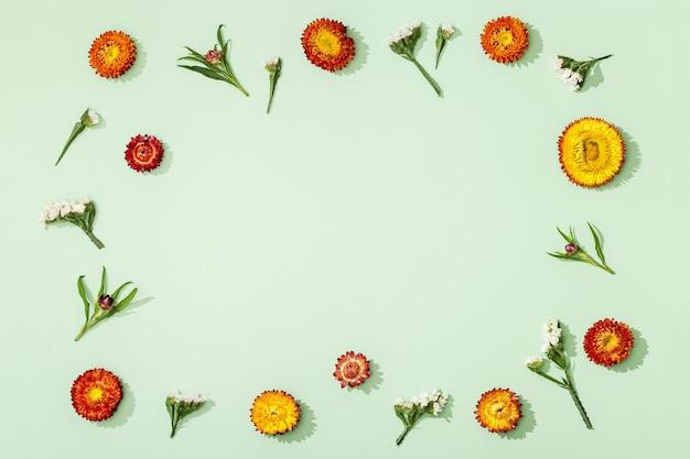 Blumen zusammensetzung. rahmen aus getrockneten verschiedenen blumen auf sortiergrün
