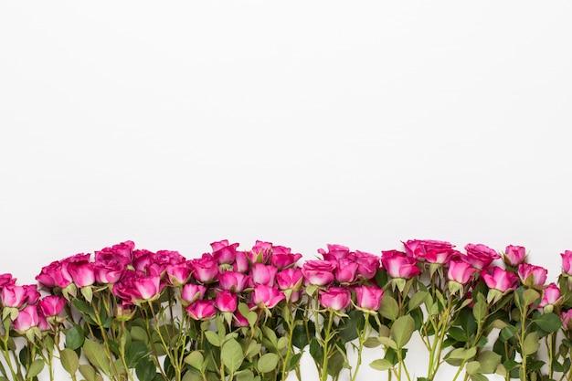 Blumen zusammensetzung. rahmen aus roter rose auf weißem holz. flache lage, draufsicht, kopierraum.