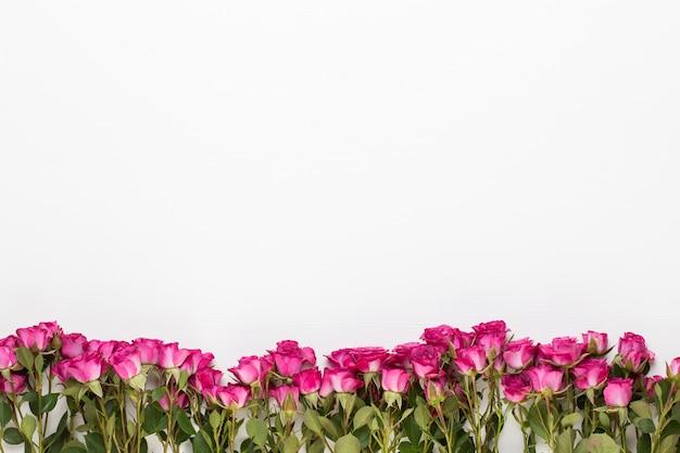 Blumen zusammensetzung. rahmen aus roter rose auf weißem holz.