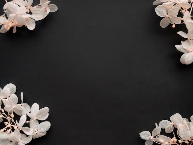 Blumen zusammensetzung. rahmen aus weißen blumen hortensie auf schwarzem hintergrund. valentinstag, muttertag und frauentag-konzept. flache lage, ansicht von oben.