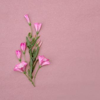Blumenarrangement aus rosa wildblumen auf rosa hintergrund. grußkarte mit platz für design.