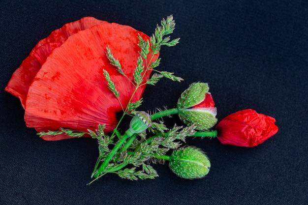 Blumenarrangement von roten mohnblumen auf schwarzem hintergrund platz für textkopierraum