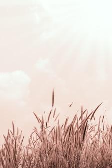Blumengras-weinlesenatur