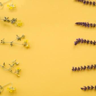 Blumengrenzen auf gelbem hintergrund