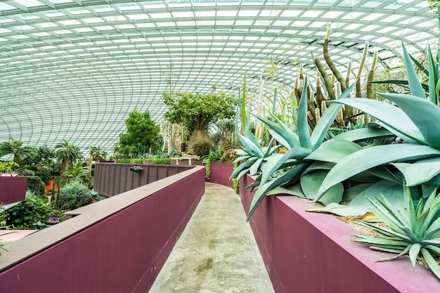 Blumenhaubengarten und gewächshauswald für reise