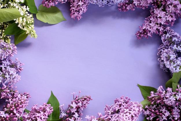 Blumenhintergrund mit lila und weißen fliedern.