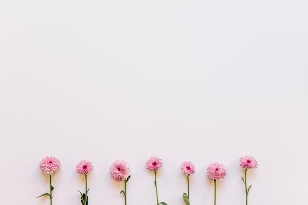 Blumenhintergrund mit rosa blumen auf unterseite
