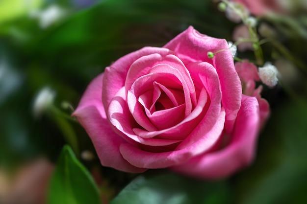 Blumenhintergrund. nahaufnahme einer rosa rose in einem festlichen blumenstrauß