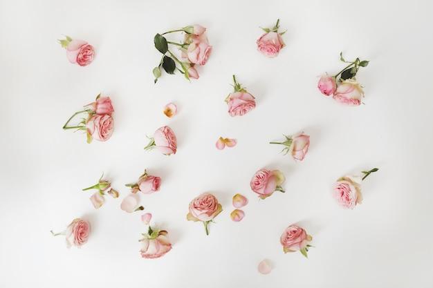 Blumenkomposition mit rosenblumenmuster auf weißer oberfläche