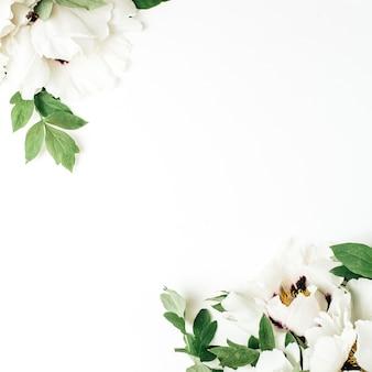 Blumenkomposition von weißen pfingstrosenblumen auf weißem hintergrund. flache lage, ansicht von oben
