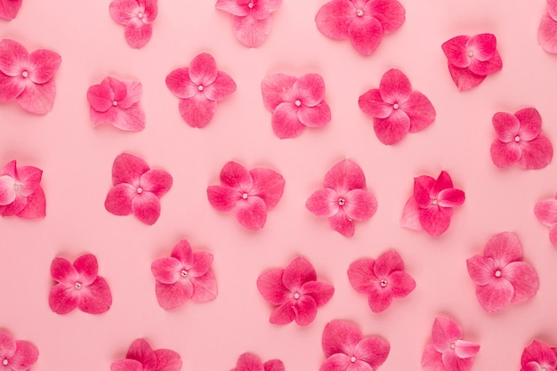 Blumenkompositionsmuster aus rosa blumen