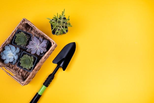 Blumenkorb mit schwarzer schaufel