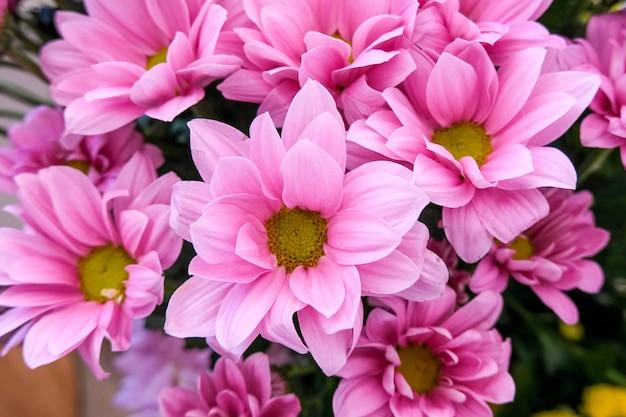 Blumenladen mit schönen blumen des feiertags. blumen in einer vase für dekor und bouquet.