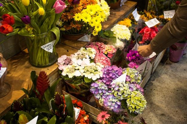 Blumenmarkt - schöne frische hortensienblüten in vasen zu verkaufen