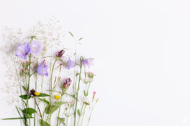 Blumenmuster mit bunten wildblumen, grünen blättern, zweigen auf weißem hintergrund. flache lage, ansicht von oben. geburtstag, mutter, valentinstag, frauen, hochzeitstag-konzept.