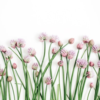 Blumenmuster mit wilden blumen, grünen blättern, zweigen auf weißem hintergrund. flache lage, ansicht von oben