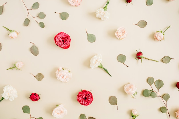 Blumenmuster textur aus beigen und roten rosen, eukalyptusblatt auf hellem pastellbeige. flache lage, draufsicht. blumentextur.
