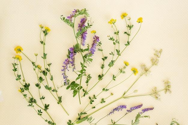 Blumenmuster von wildblumen.