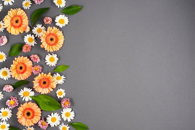 Blumenornament auf der linken seite Kostenlose Fotos