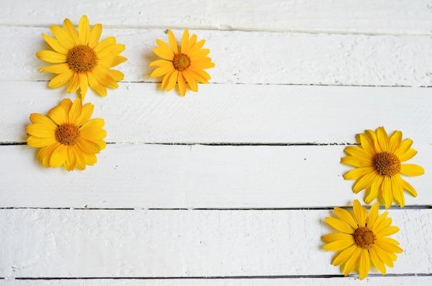 Blumenrahmen auf dem weißen hölzernen. kopieren sie platz