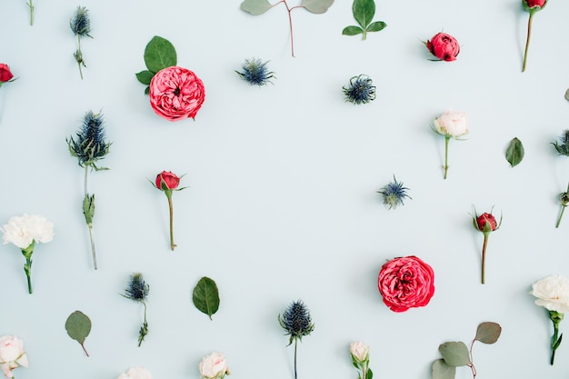 Blumenrahmen aus beige und roten rosen, eukalyptuszweige auf hellpastellblauem hintergrund. flache lage, ansicht von oben