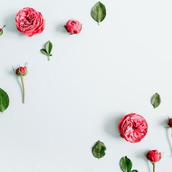 Blumenrahmen aus roten rosen auf blassem pastellblauem hintergrund. flache lage, ansicht von oben