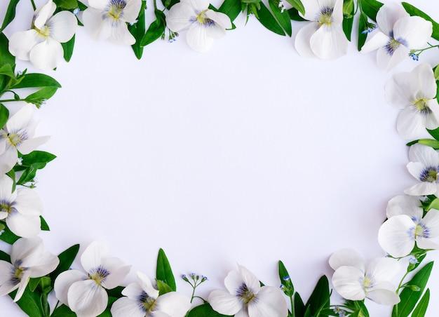 Blumenrahmen aus veilchen und grünen zweigen auf weißem hintergrund
