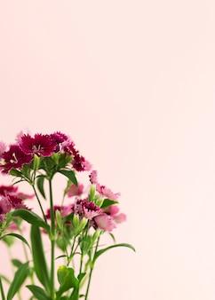 Blumenrahmen mit rosa hintergrund und kopierraum