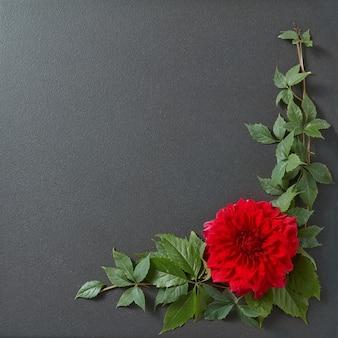 Blumenrand design mit blättern und copyspace auf schwarzer oberfläche