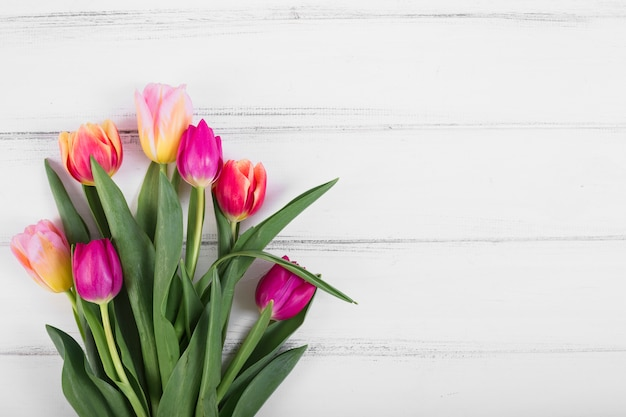 Blumenstrauß aus bunten tulpen
