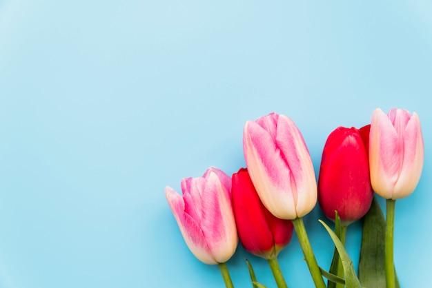 Blumenstrauß aus hellen blumen im bund