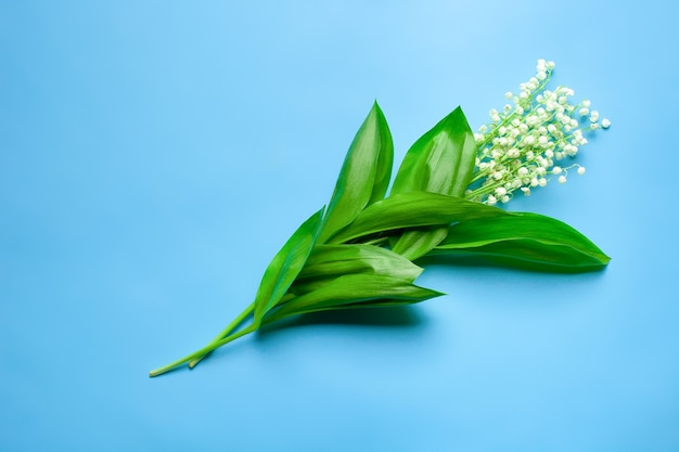 Blumenstrauß aus maiglöckchen in der mittleren wohnung lag mit blauem hintergrund