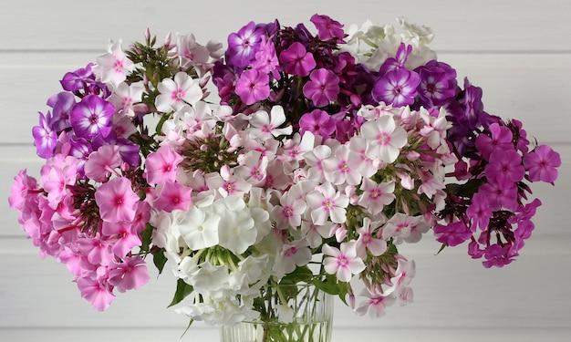 Blumenstrauß aus phlox-nahaufnahme als floraler hintergrund gartenphlox in verschiedenen sorten