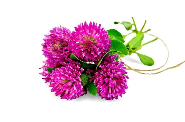 Blumenstrauß aus rosa klee, gebunden mit einem seil isoliert auf weißem hintergrund
