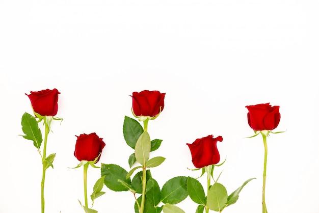 Blumenstrauß aus roten rosen mit einem roten band.